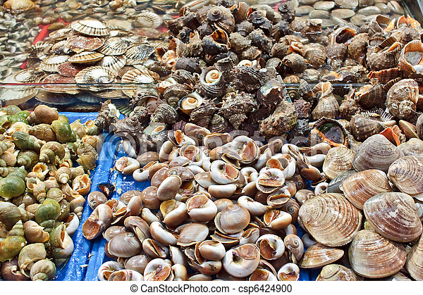 Fresh assorted shells at wholesale seafood market - csp6424900