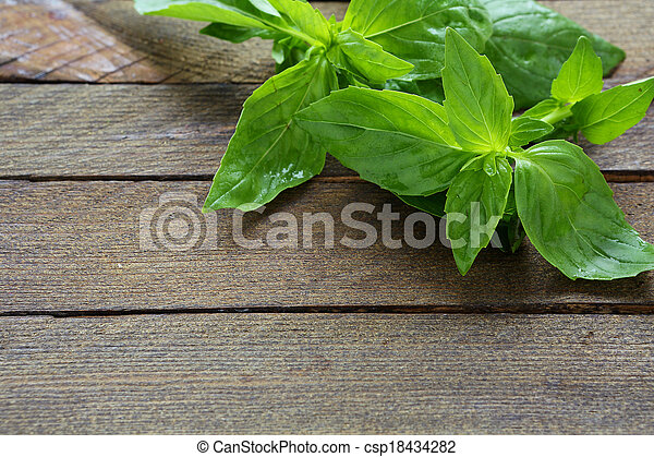fresh basil on the boards - csp18434282