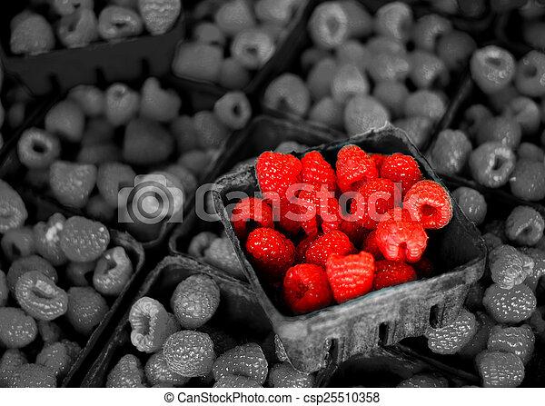 Fresh Berries on Display - csp25510358