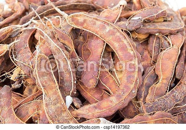 Fresh brown tamarind fruit - csp14197362
