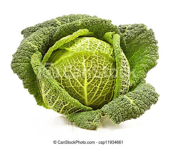 Fresh cabbage isolated on white - csp11934661