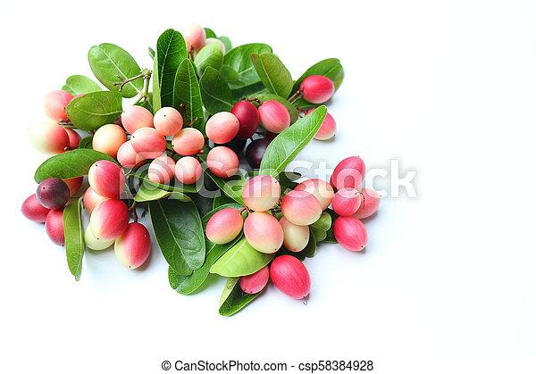 Fresh carissa carandas fruits on white background - csp58384928