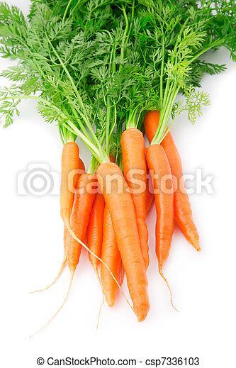 fresh carrot fruits with green leaves - csp7336103
