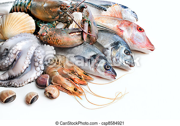 Fresh catch - csp8584921