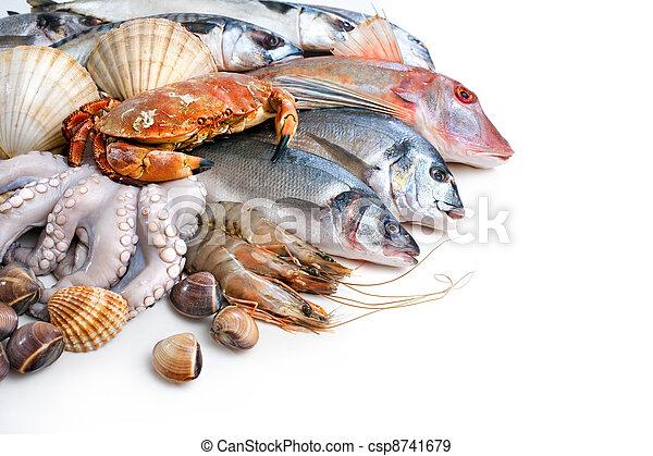 Fresh catch - csp8741679