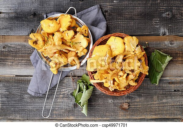 Fresh chanterelle mushrooms on a wooden background - csp49971701