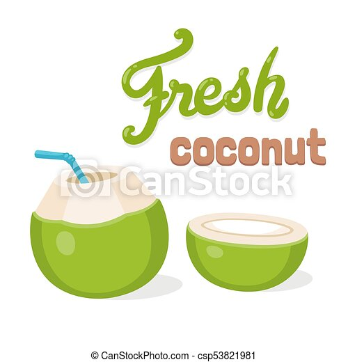 Fresh Coconut Water Drink Cartoon Drawing With Lettering Young Green Drinking Straw And Cut In Half Isolated Vector Illustration
