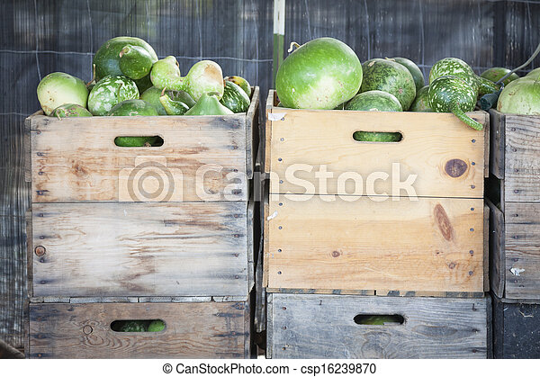 Fresh Fall Gourds and Crates in Rustic Fall Setting - csp16239870