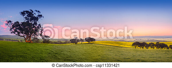 Fresh Field - csp11331421