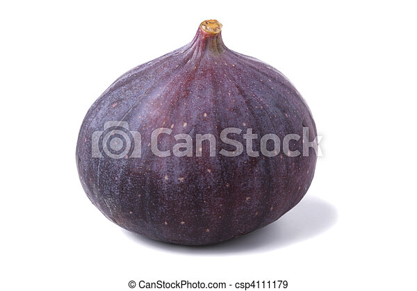 Fresh fig - csp4111179