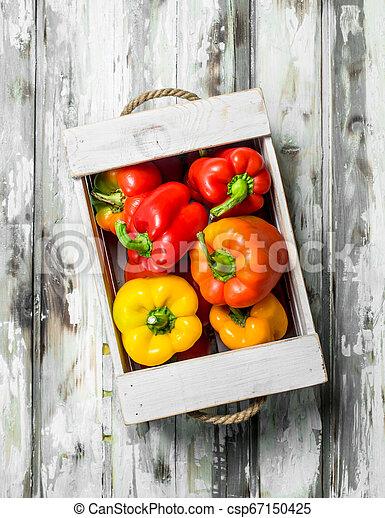 Fresh fragrant pepper in the box. - csp67150425