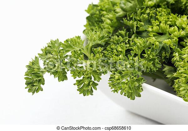 Fresh French Parsley Herb Fresh French Parsley Green Herb In Dish