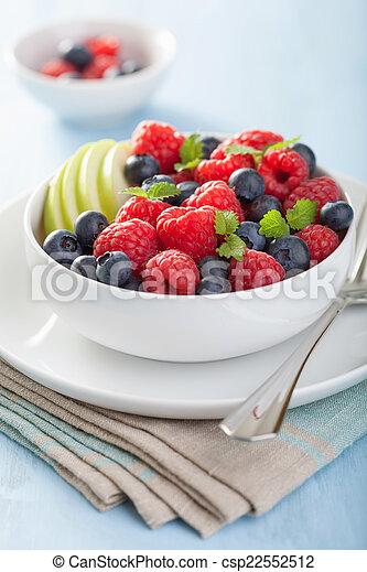 fresh fruit salad with raspberry blueberry apple - csp22552512
