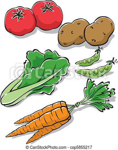 Fresh Garden Vegetables - csp5855217