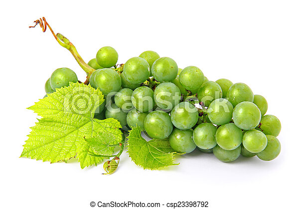 Fresh grape fruits with green leaves isolated - csp23398792