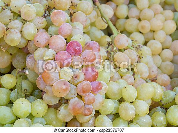 Fresh grapes - csp23576707