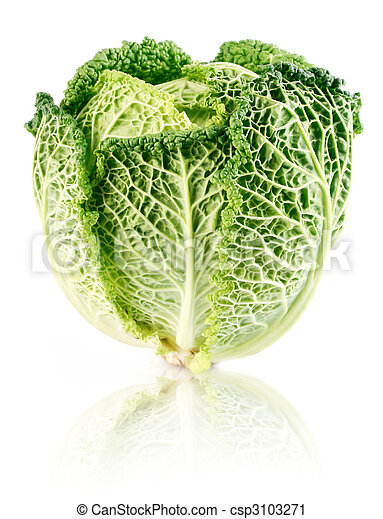 fresh green cabbage fruit isolated on white - csp3103271