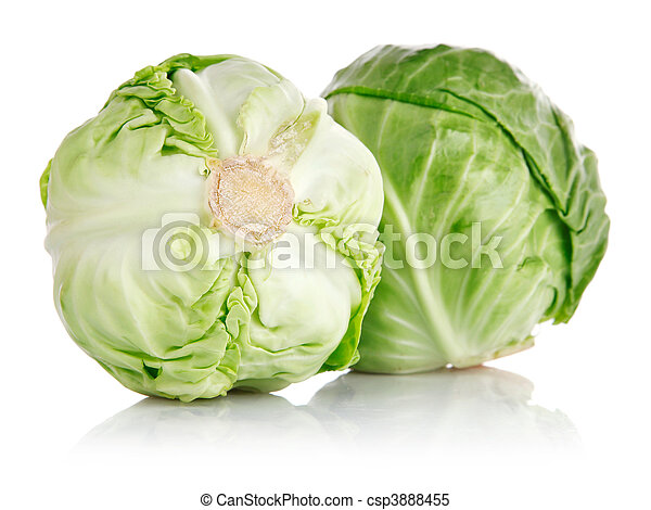 fresh green cabbage fruit isolated - csp3888455