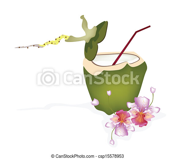 Fresh Green Coconut And Water Drink