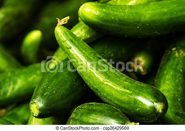 Fresh green cucumber collection on market close up.  Cucumber  b - csp26429569