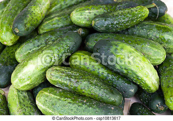 fresh green cucumber - csp10813617
