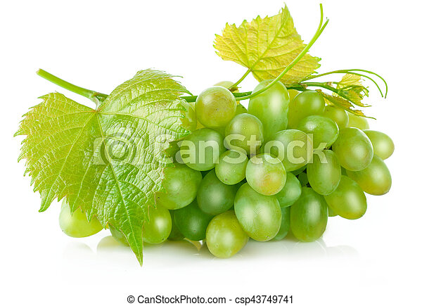 Fresh green grapes with leaf harvest fruit - csp43749741