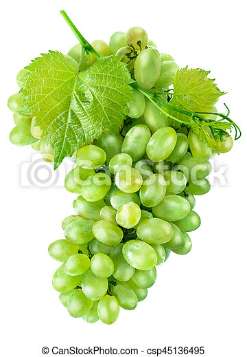 Fresh green grapes with leaf harvest fruit - csp45136495