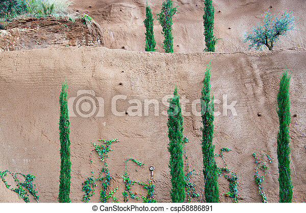 Fresh green junipers, vines and other trees against red clay background - csp58886891