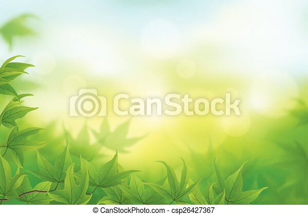Fresh green leaves - csp26427367