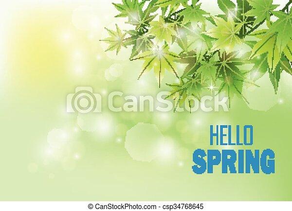 Fresh green leaves  - csp34768645