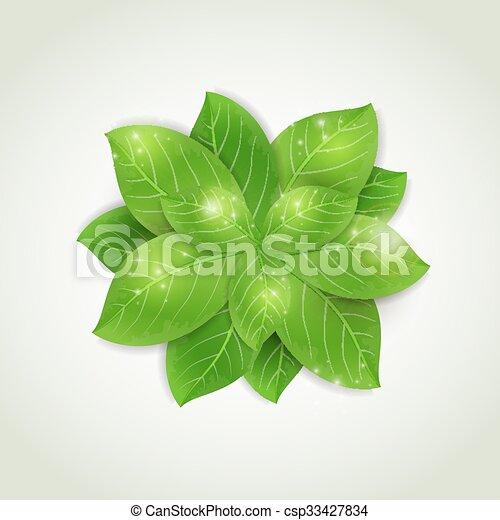 Fresh green leaves - csp33427834
