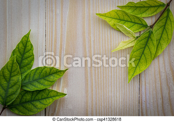 Fresh green leaves on the wooden floor - csp41328618