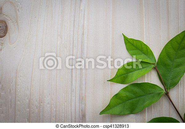 Fresh green leaves on the wooden floor - csp41328913