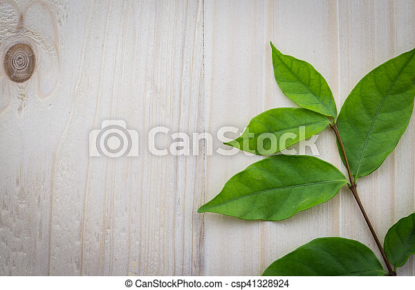 Fresh green leaves on the wooden floor - csp41328924