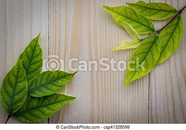 Fresh green leaves on the wooden floor - csp41328599