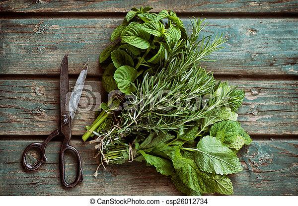 Fresh herbs - csp26012734