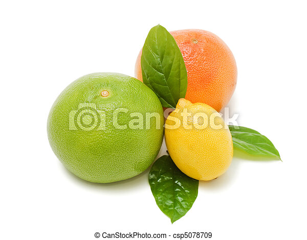 Fresh juicy grapefruits with green leafs. Isolated  - csp5078709