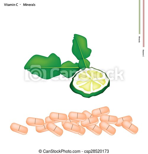 Fresh Kaffir Limes with Vitamin C and Minerals - csp28520173