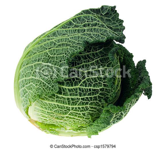 fresh kale isolated - csp1579794