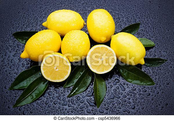 Fresh lemon fruit - csp5436966
