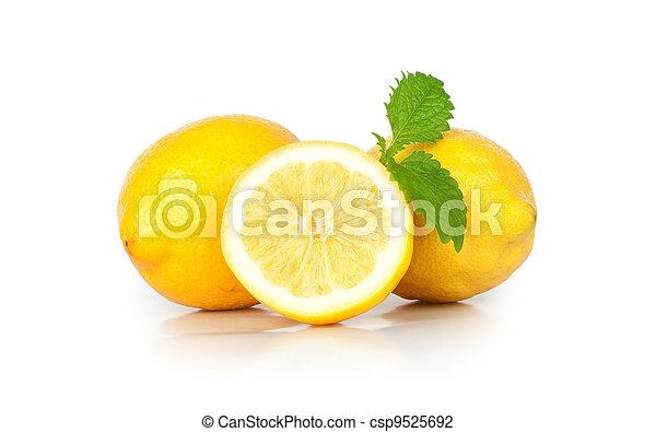 Fresh lemon isolated on white background - csp9525692
