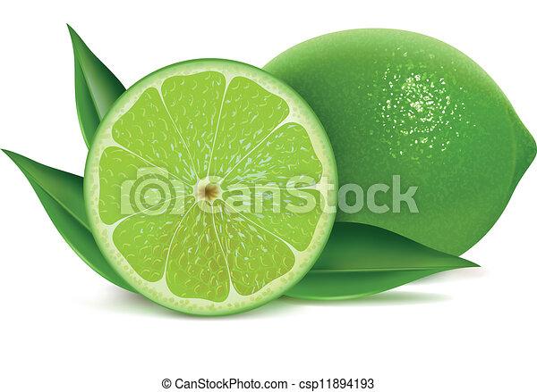 Fresh limes  - csp11894193