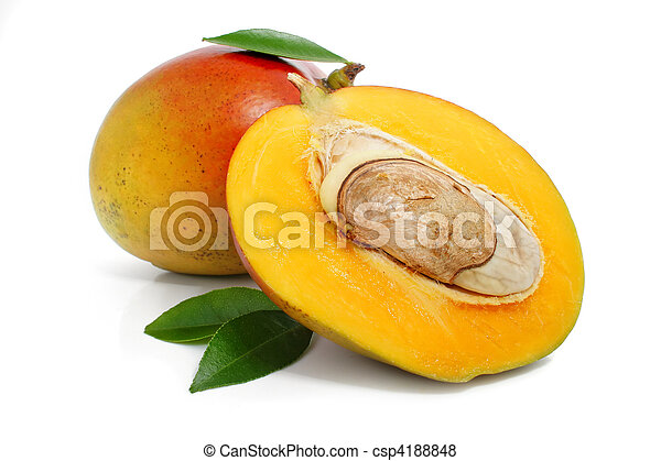 fresh mango fruit with green leafs isolated - csp4188848