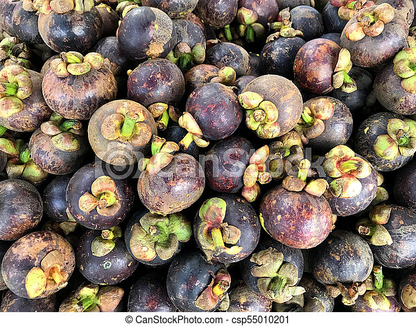 Pictures Of Mangosteen