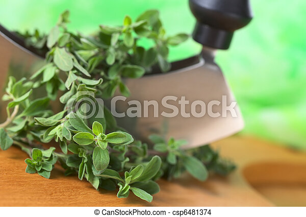 Fresh marjoram twigs with mezzaluna on cutting board with green background (Selective Focus, Focus on some of the leaves in the front) - csp6481374