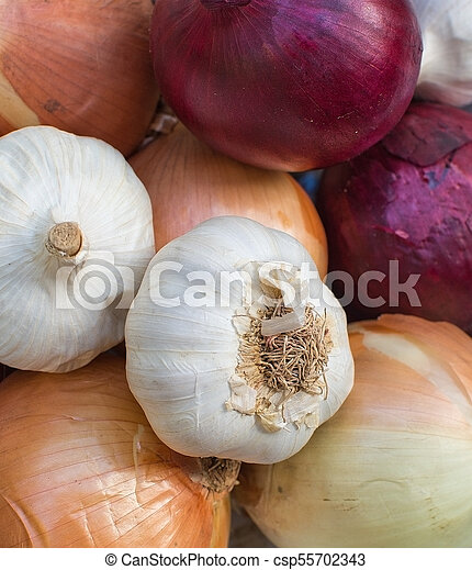 Fresh mixed onions plate - csp55702343