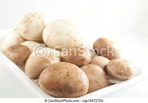Fresh mushrooms - csp19472704