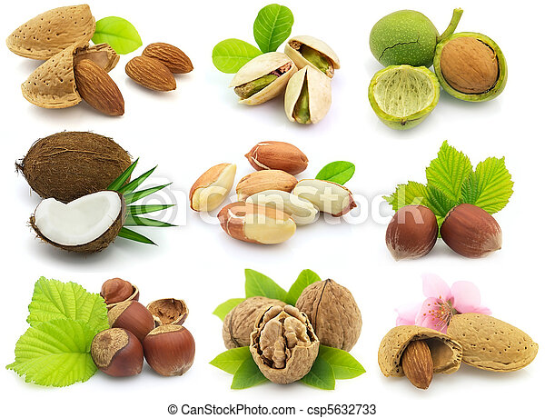 Fresh nuts with leaves - csp5632733