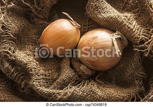 fresh onion in burlap sack bag - csp74349819