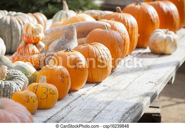 Fresh Orange Pumpkins and Hay in Rustic Fall Setting  - csp16239848